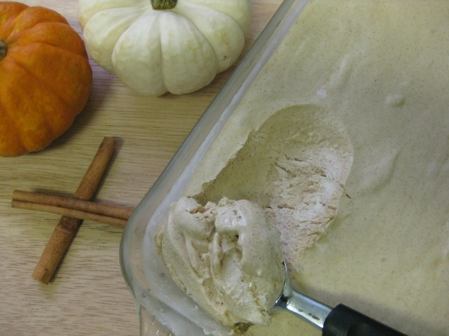 Cinnamon Ice Cream~ Erin's DC Kitchen